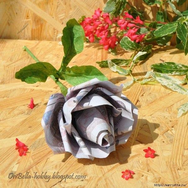 Розы из денег своими руками для начинающих 49